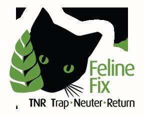 Feline Fix